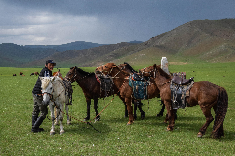 Notre trek en Mongolie – La Mongolie centrale